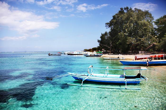 Trip by Caspla Bali